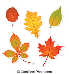 autumn set of leaves stickers with shadows - oak, maple, ...