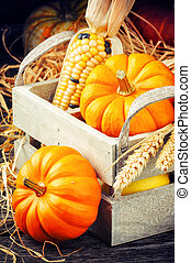 Autumn setting with pumpkins