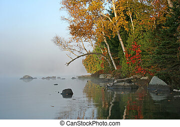 Autumn Shoreline on a Misty Morning - Haliburton, Ontario, Canada