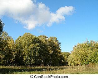 Autumn Siberian landscape