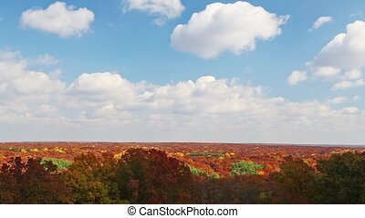Twenty-seven minutes of footage compressed into a one minute loop features clouds passing through a blue sky over brilliantly colorful fall foliage at Indiana's Brown County State Park.