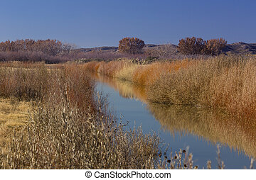 Autumn splendor in New Mexico