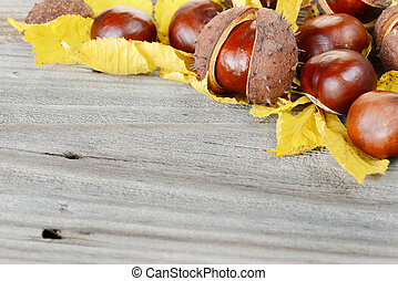 Fruits and leaves of chestnut on the old gray board