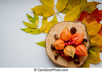 autumn still life of colorful leaves, acorns and a branch with wild rose berries on white table, top view. Copy space. ashberry and yellow autumnal leaves, Fresh physalis, nuts