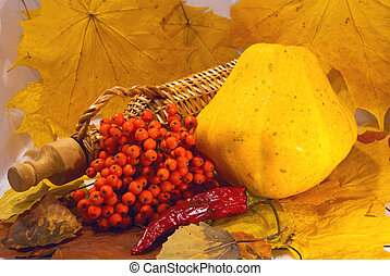 Autumn still-life of scallops and rowan