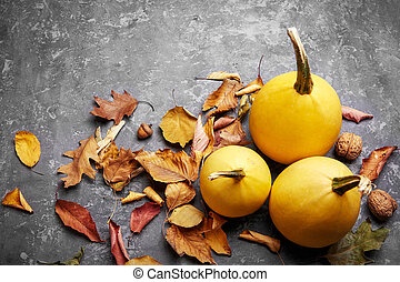 Autumn still life pumpkin with yellow leaves