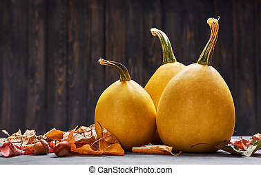 Autumn still life pumpkin with yellow leaves. Vector