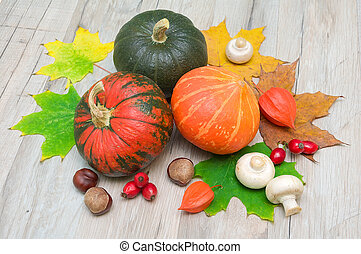 autumn still life. three pumpkins, chestnuts, berries, rose hips, mushrooms and autumn maple leaves.