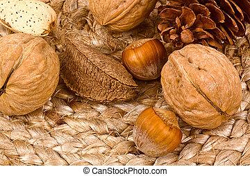 Autumn still life with acorn, nuts