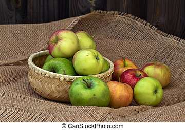 Autumn still life with beautiful ripe apples