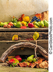 autumn still life with fruit in leaves on board and vines...