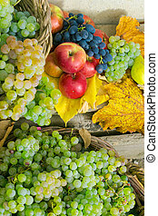 autumn still life with harvest in leaves - autumnal harvest...