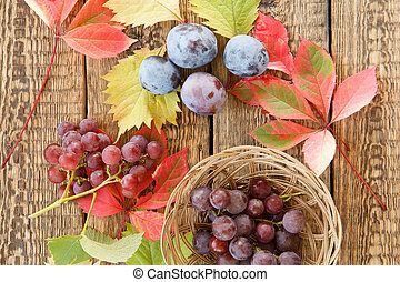 Autumn still life with plums, grapes and wicker basket, yellow and red leaves