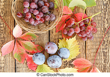 Autumn still life with plums, grapes in wicker basket and leaves