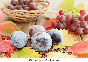 Autumn still life with plums, grapes, leaves and wicker basket