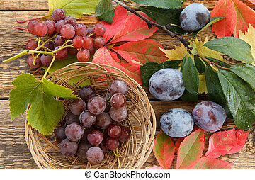 Autumn still life with plums on branch, grapes in wicker basket and leaves