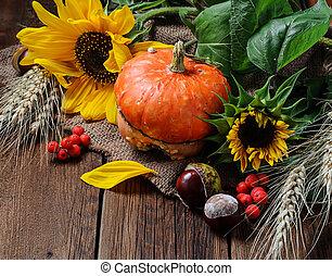 Autumn still life with pumpkin and sunflower