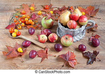Autumn still life with various gifts of nature.