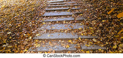 Autumn stone staircase with yellow leaves. Colorful foliage in the Park