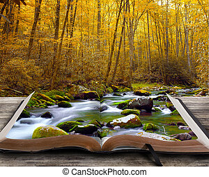 Autumn stream with book.