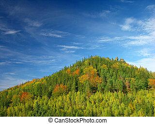 autumn, summer hill Landscape