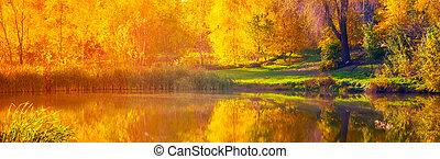 Autumn sunrise wide lake, gold birch
