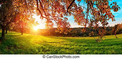 Autumn sunset in a rural landscape