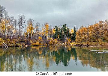 Autumn Sunset in the wild Siberian
