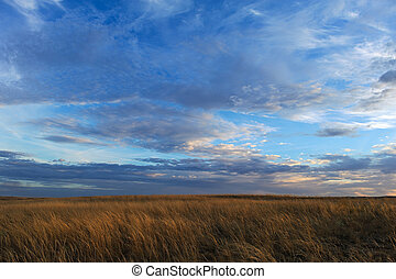 Autumn sunset on the meadow. Clouds and grass beautiful...