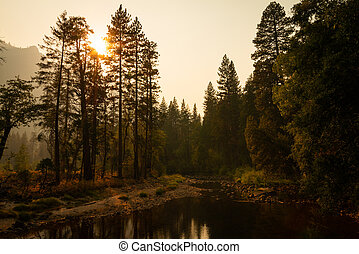 Autumn sunset over trees by Merced River, Yosemite