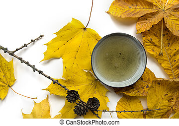Autumn tea time still life closup on white background