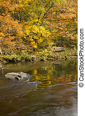 Autumn, Tellico River, Cherokee NF - Autumn, Tellico River, ...