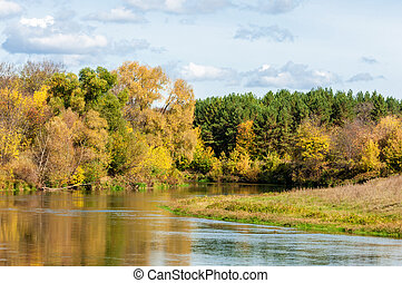 Autumn, the river covered with forest, a bright sunny day