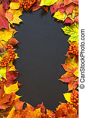 Autumn theme background with maple leaves.