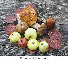 autumn theme still life