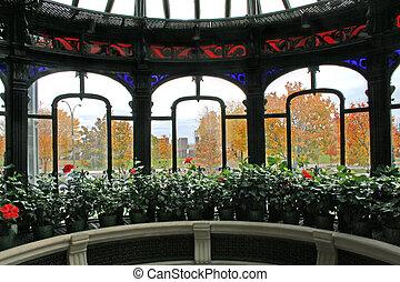 Autumn through Window 2