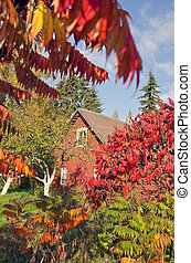 autumn time house in village