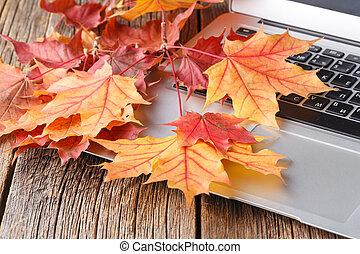 autumn time to change job
