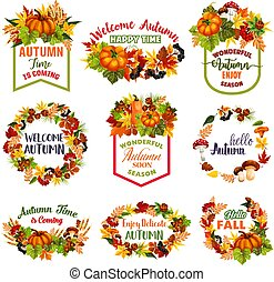 Autumn time vector icons of fall leaf, pumpkin
