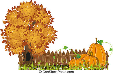 Autumn Tree and pumpkins - Tree and pumpkins with leaves and...