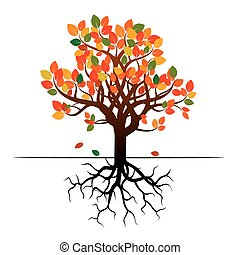 Autumn Tree and Roots.