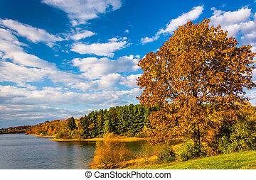 Autumn tree and view of Lake Marburg, at Codorus State Park, Pennsylvania.
