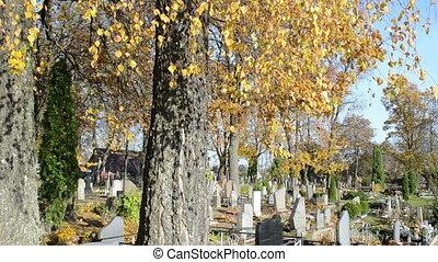 autumn tree monument