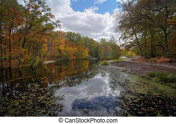Autumn Tree Reflections