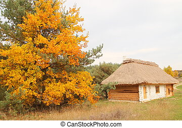 autumn tree with a cottage