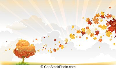 Autumn tree with beautiful swirl of maple leaves