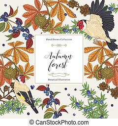 Autumn trees and birds background. Chestnut, honeysuckle, juniper branches and goldfinches. Hand drawn vector illustration. Colorful vintage engraving.