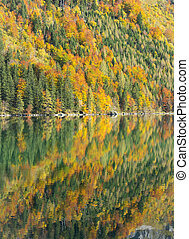 Autumn trees and reflection in a mountain lake