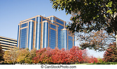Autumn Trees by Office Building