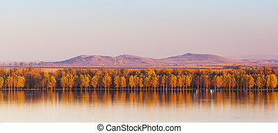 Autumn Trees Mirroring On Danube river with Macin Mountains...